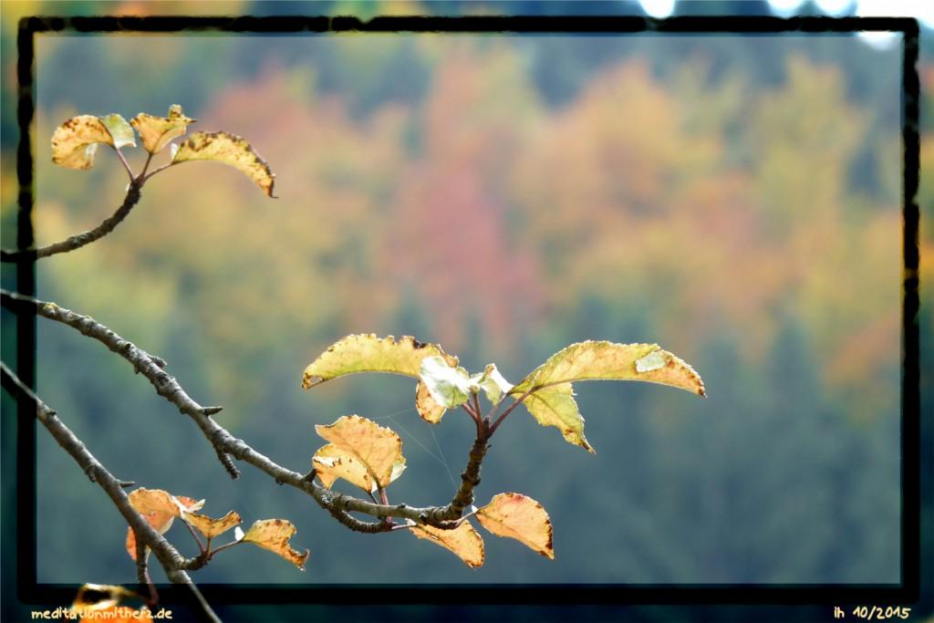 Meditation Herbstfarben