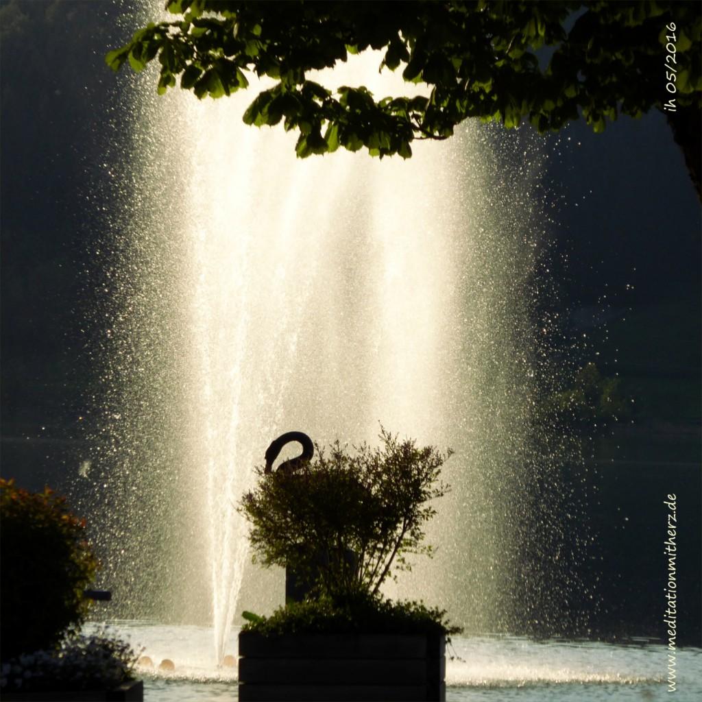 P1020681 Schwan Springbrunnen k