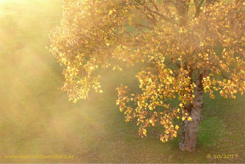 Meditation goldenes Licht